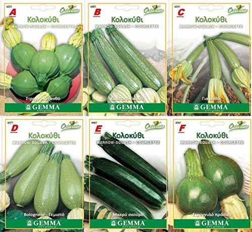 e curcubita Pepo, Nano Verde. 0-35 Squash Marrow cucurbita Seeds 6 Special Varieties Best Quality Non-GMO ()