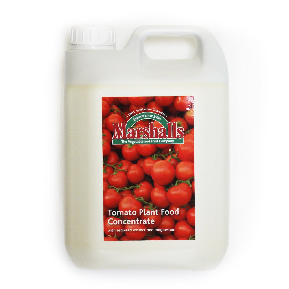 Marshalls Tomato Plant Food/Feed Concentrate 2.5L