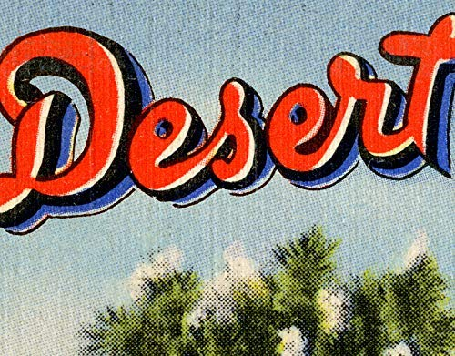 Southwest Decor 24 x 36 or Smaller Toschik Petley Joshua Tree 1958 Wildlife of the Desert POSTER! Arizona - Vintage Postcard