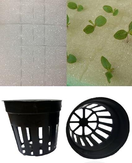 Amazon.com: aggreen esponjas cubos tapones y vasos de cesta ...