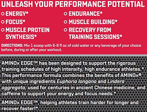BSN Amino X Edge Amino Acid Powder