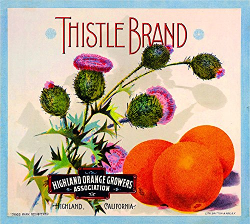 - A SLICE IN TIME Highland San Bernardino County California Thistle Brand Orange Citrus Fruit Crate Box Label Art Print