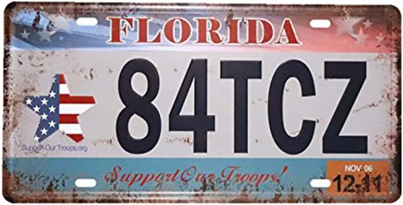 Placa de matrícula de coche, de la marca Eureya; para hogar, cafetería, bar, pub, restaurante, exhibición; decoración de pared vintage,metal,Florida 84tcz,15x30cm: Amazon.es: Hogar