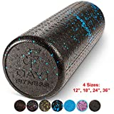 High Density Muscle Foam Rollers by Day 1 Fitness – Sports Massage Rollers for Stretching, Physical Therapy, Deep Tissue and Myofascial Release – For Exercise and Pain Relief – Speckled Blue, 18″ For Sale