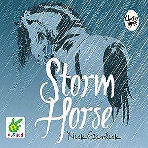 Storm Horse Audiobook