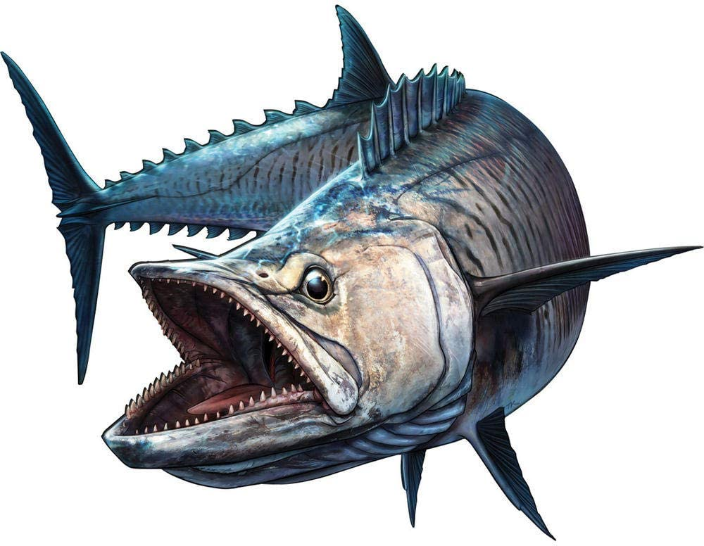 20cm QULIN Auto-Aufkleber Autoaufkleber Shark Fish Fischerboot Rod Sto/ßstange Truck Bass Vinyl Aufkleber 20cm