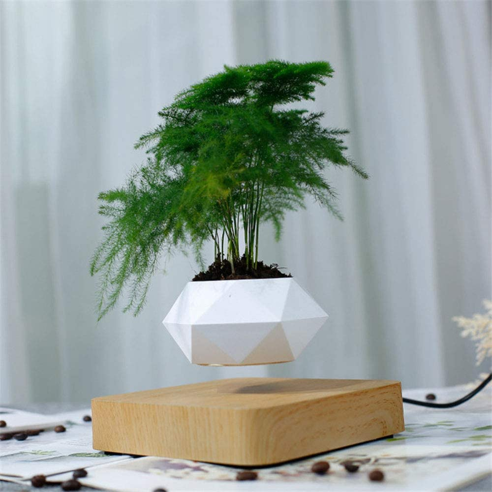 C G Floating Bonsai Pot Magnetic Suspension Levitating Air Flower Pots Creative Design Levitation Bonsai Home Office Decorations Fun Gift Not Include Plant Talkingbread Co Il