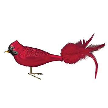 Greatest Amazon.com: Old World Christmas Large Red Cardinal Glass Blown  UE31
