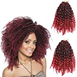 2 Pack 8 inch 120gram Afro Kinky Curly Mali Bob Crochet Braids Twist Braiding Marley Braid Synthetic Hair Extensions (8'(2pack), t1b/bug)