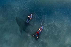 ING Wall Art Photo Print Scroll Poster on Canvas(32x21 inches)- Hai Rowing Risk Paddle Board Surfer Water
