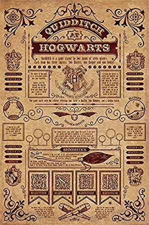 Amazon Com Harry Potter Movie Poster Print Quidditch At