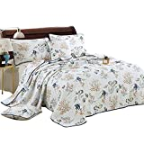 Alicemall Ocean Themed Quilt Bedding Set 100% Cotton Soft and Breathable Fish and Coral Prints Beautiful Quilt Set, Queen Size White Bedspreads Set (Fish, King)