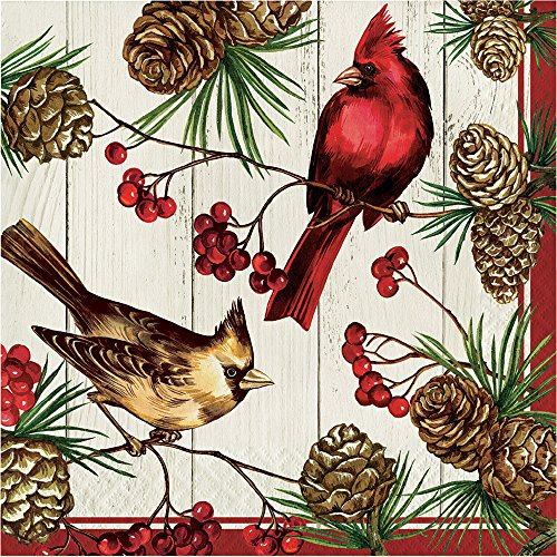 Creative Converting 16-Count Lunch Paper Napkins, Winter Cardinal