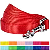 "Blueberry Pet 12 Colors Durable Classic Dog Leash 5 ft x 5/8"", Rouge Red, Small, Basic Nylon Leashes for Dogs"