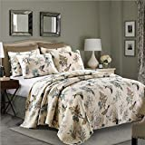 Alicemall Pastoral Bird Quilt Set Soft Cotton Lovely Birds and Branches Prints 3 Pieces Bedspreads Set, 1 Quilt and 2 Pillowcase, Queen Size (Bird, Queen)