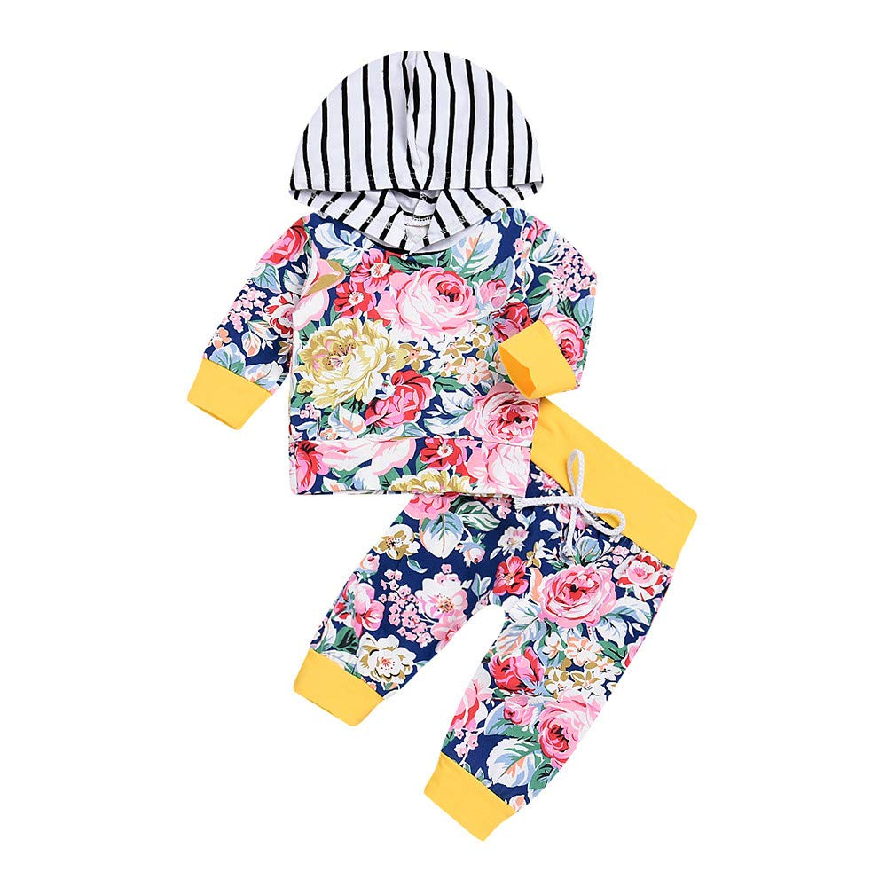 2PCS Boys Girls Clothing Sets, Infant Baby Kids Long Sleeve Floral Print Stripe Hooded Top+Pants Set Outfit