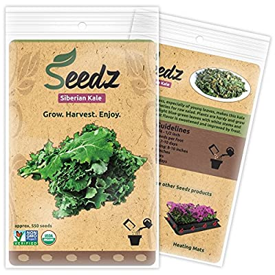CERTIFIED ORGANIC SEEDS (Apr. 550) - Organic Siberian Kale Seeds - Heirloom Seeds - Kale Vegetable Seeds - Non GMO, Non Hybrid - USA