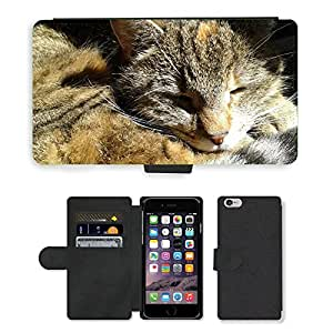 """Hot Style Cell Phone Card Slot PU Leather Wallet Case // M00108244 Cat Sleep Cats Pet Feline Animals // Apple iPhone 6 4.7"""""""