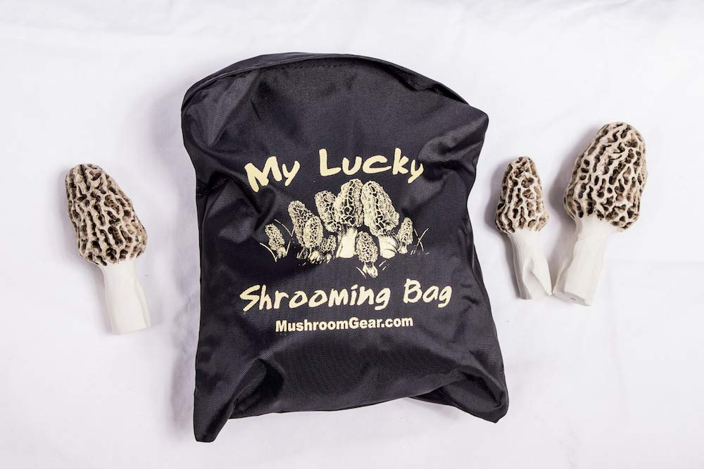My Lucky Shrooming Bag