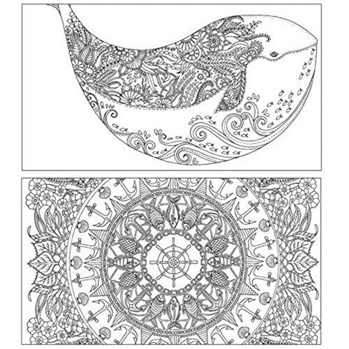 high-quality Tiptiper Libro de colorear, 24 páginas Libro de ...