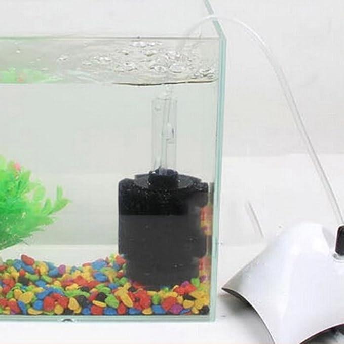 hnnew Filtro de Esponja Bio-Esponja para freír Betta camarón Nano pecera Acuario L: Amazon.es: Productos para mascotas