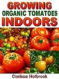 Growing Organic Tomatoes Indoors (Easy Indoor Organic Gardening)