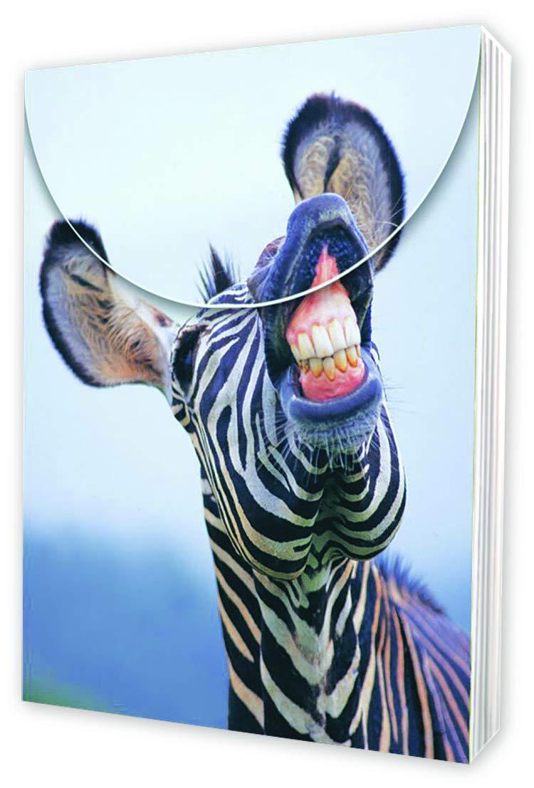 Laughing Zebra Pocket Pal