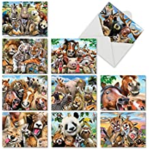 M6639OCB Here'S Looking At Zoo: 10 Assorted Blank All-Occasion Note Cards Featuring All of the Animals of the Earth Getting Together in Various Configurations to Take a Selfie, w/White Envelopes.