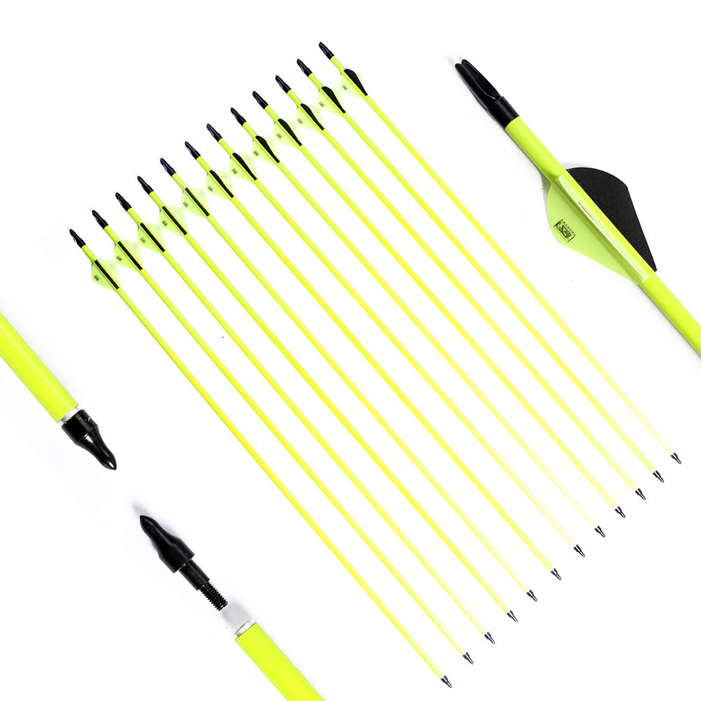 PG1ARCHERY Carbon Arrows Fluorescent Green Shaft with 2'' Plastic Vanes fletching & Removable Tips for Archery Practice Hunting Targeting, 12 Pack by PG1ARCHERY