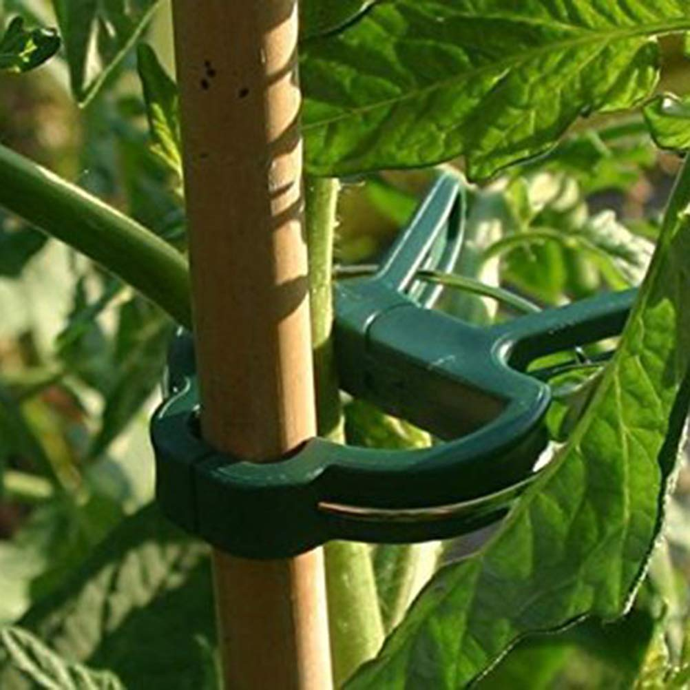 IYSHOUGONG 20 Pcs Plant and Flower Clips Garden Plant Support Staking Clips Flower Lever Loop Gripper Clips for Supporting Stems Vines Grow Uprigh