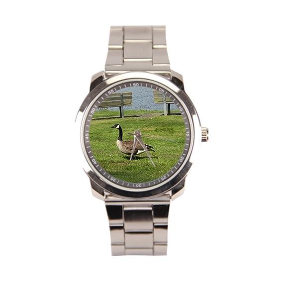 anglecity Canadá Ganso acero inoxidable reloj de pulsera: Amazon.es: Relojes