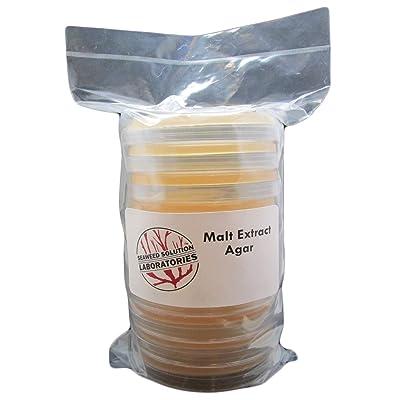 Malt Extract Agar - MEA - 10, 100 Millimeter Plates - Sterile: Toys & Games