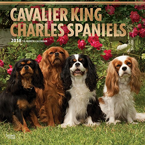 Cavalier King Charles Spaniels 2018 12 x 12 Inch Monthly Square Wall Calendar with Foil Stamped Cover, Animals Dog Breeds Puppies (Multilingual Edition) by Browntrout