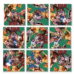 Amazon Com B Dazzle Rodeo Scramble Squares 9 Piece Puzzle