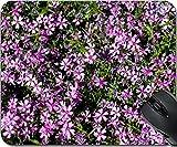 MSD Natural Rubber Mouse Pad Mouse Pads/Mat design 19900393 Aubrieta cultorum pink or purple small flowers