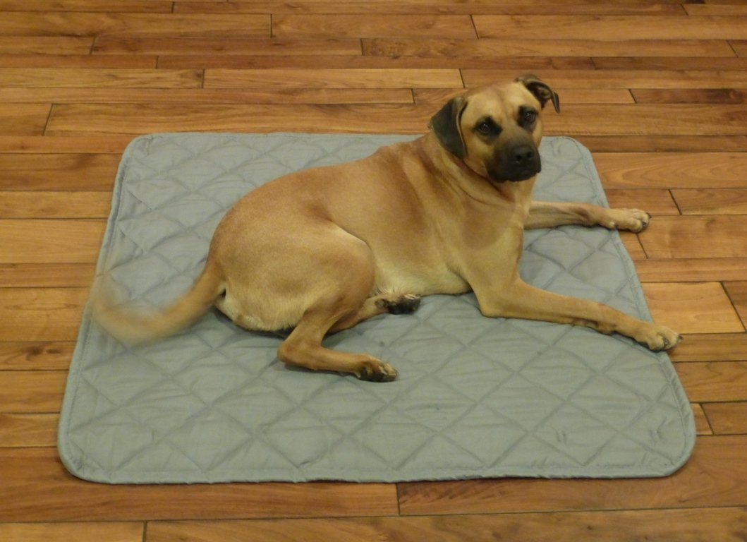 Formosa Covers PAWPALS Deluxe Roll-Up Dog Mat - Tough Non-Slip Water-Resistant Non-Overheating - Perfect for Crate, Kennel, Playpen and SUV Cargo Liner - Large 42''x28''