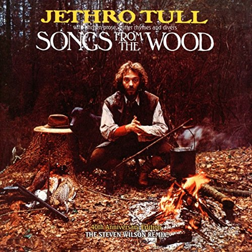Songs From The Wood - Wood Solid Steven
