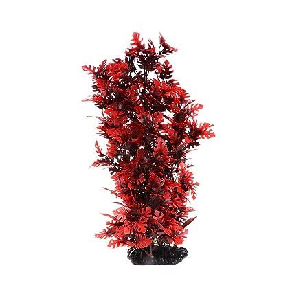 Kofun Plantas de Acuario de Hidun Rojo con Musgo Vivo con Base Estable para pecera