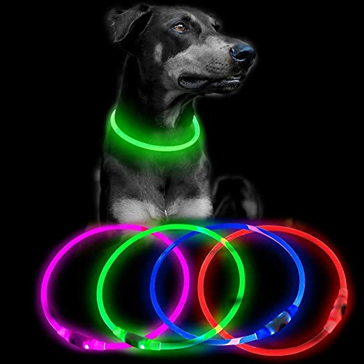 Clan-X Led Dog Collar - USB Rechargeable Glowing Pet Collar, Waterproof TPU Light Up Collar, Camping Lights for Small Medium Large Dogs (Green)