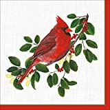 Caspari Winter Songbirds Cocktail Napkins, Pack of 20, Red