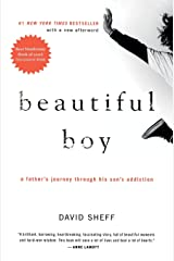 Beautiful Boy: A Father's Journey Through His Son's Addiction Paperback