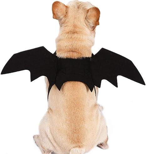 Alivier Alas de murciélagos de Mascotas de Halloween Disfraz de ...