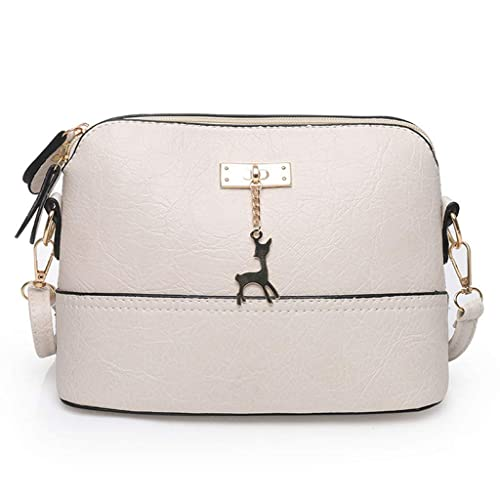 Amazon.com  AgrinTol Small Bag Female Wild Messenger Bag Wide Shoulder  Strap Shoulder Simple  Shoes 291ae9393cf70