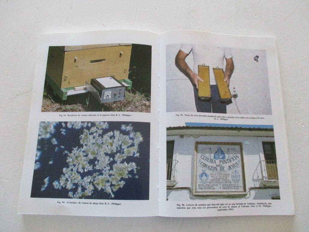 Guia del Apicultor (Spanish Edition): Jean-Marie Philippe: 9788471142948: Amazon.com: Books