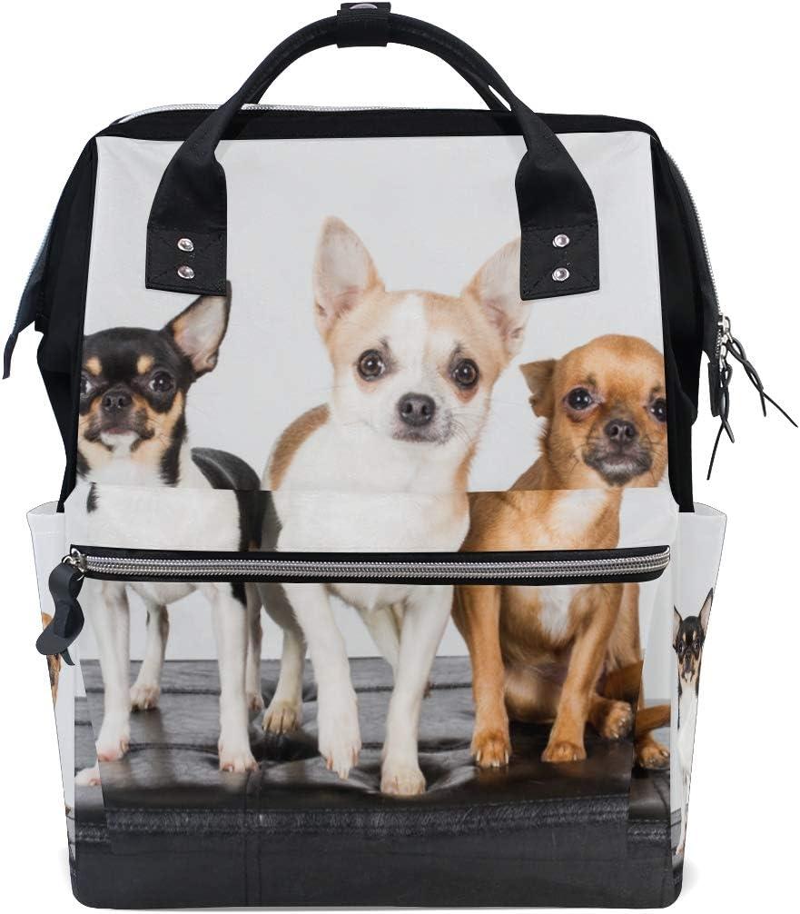 Mignon Petit Chihuahua Chiot Chien Grande Capacité Sacs À