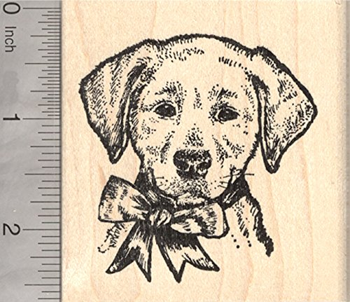 Labrador Retriever Rubber Stamp, Dog with Festive Holiday Bow, Christmas, Hanukkah
