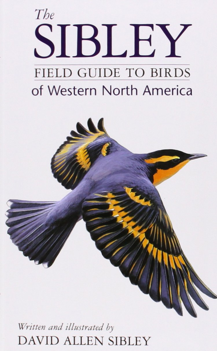 the sibley field guide to birds of western north america david