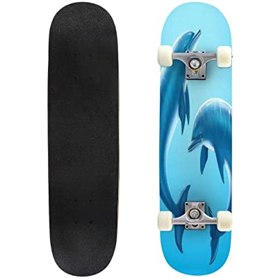 Classic Concave Skateboard Lovely Dolphin Playing Together in Underwater Marine World 3D Longboard Maple Deck Extreme Sports and Outdoors Double Kick Trick for Beginners and Professionals : Sports & Outdoors