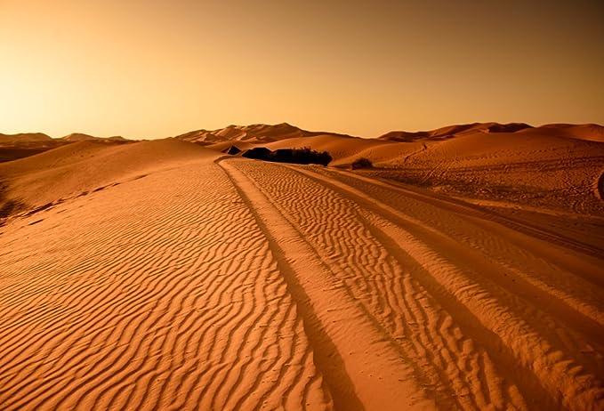 7x5ft Nature Background Desert Tour Group Photography Backdrop Photo Studio Props Decor HXFU142