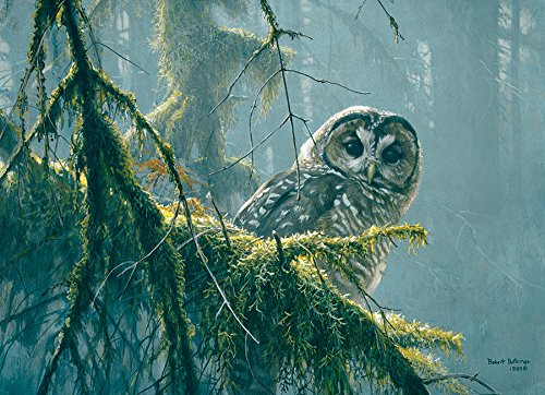 (Cobblehill 85002 500 pc Mossy Branches - Spotted Owl Puzzle, Various)